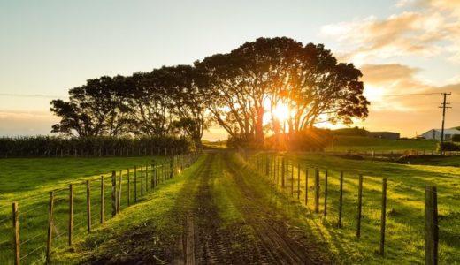 田舎が嫌いな人特徴・原因・対策!田舎を住めば都に変える方法教えます!