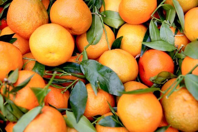 息抜きに柑橘系